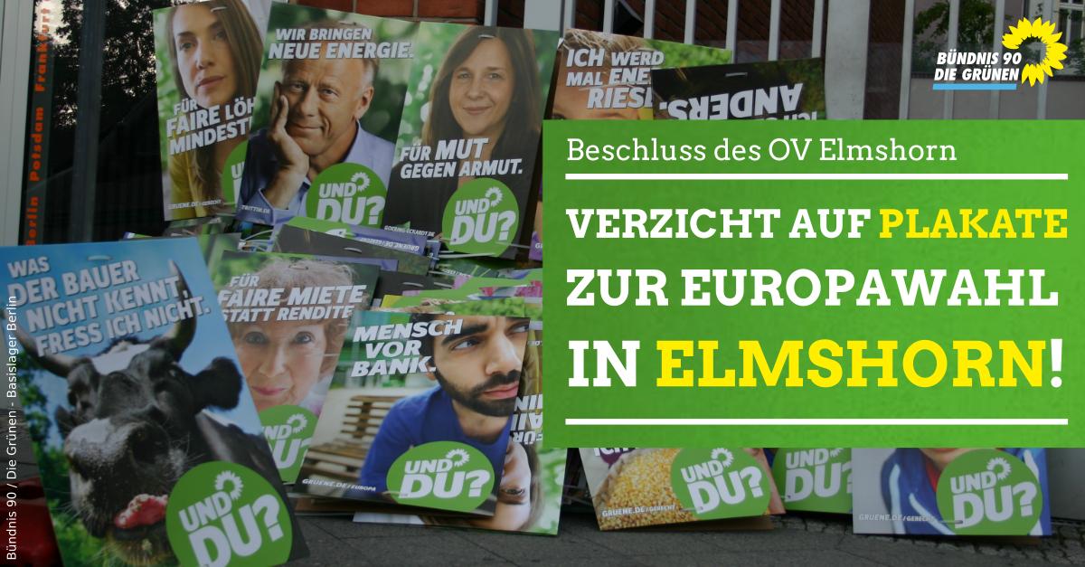 Grüne verzichten auf Plakate zur Europawahl in Elmshorn